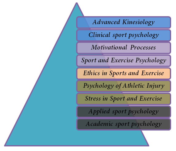 sport and exercise psychology thesis
